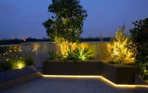 Landscape Strip Light